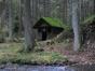 Im Rötenbachtal