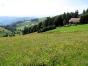 Münstertal
