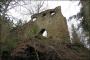 Ruine Boll